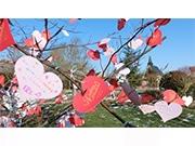 グランパシフィックが「愛のメッセージキャンペーン」 インスタ連動企画も