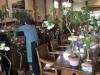 入善のコーヒー店で「つばき展」 初公開の新種含むツバキ150種類を展示