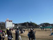 つくばで「新春凧揚げ大会」-オリジナル凧コンテストも初開催
