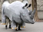 上野動物園で猛獣脱出対策訓練-大地震によるクロサイの脱出を想定
