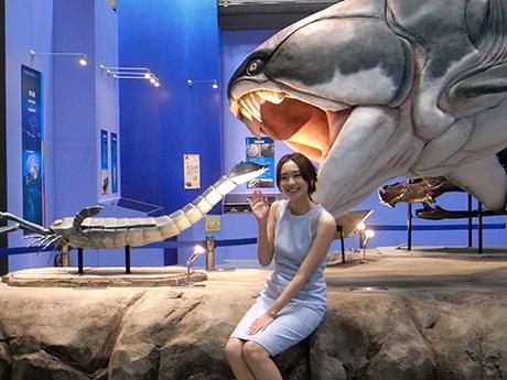 国立科学博物館で「生命大躍進」展 40億年の進化... 国立科学博物館で「生命大躍進」展 40億