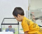 北浦和で「親子でワークショップ」イベント 新学期前に開催へ