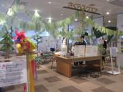 西浦和・桜環境センターで「さいたまの生きmono展」 身近な生き物、写真などで学ぶ