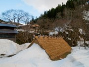 横手・増田で日本酒やソバの実の「雪中貯蔵」作業