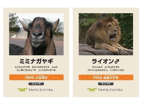 スタンプラリー景品の「動物カード」