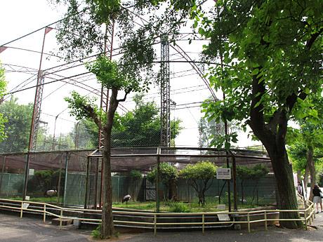 天王寺動物園のツル舎