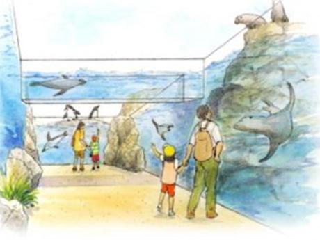 天王寺動物園ペンギン・アシカ舎整備イメージ