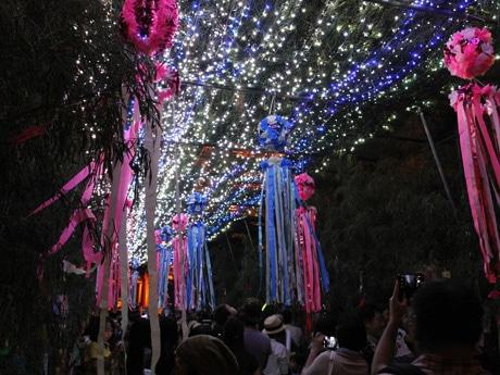 四天王寺で「七夕のゆうべ」 天の川模したササトンネル点灯