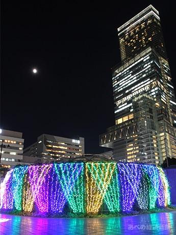 天王寺公園「てんしば」でイルミネーション点灯 今年はフォトスポットも