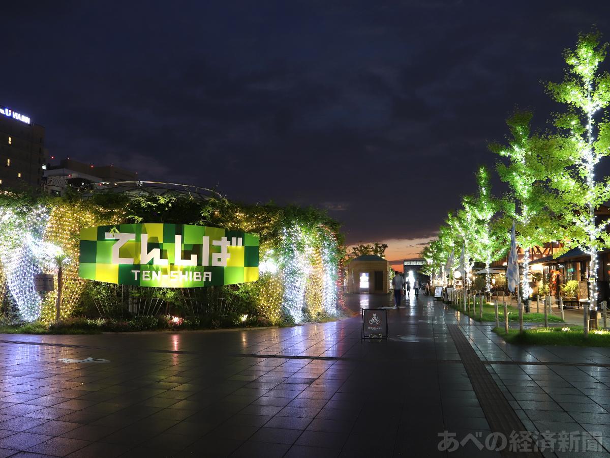 天王寺公園「てんしば」でイルミネーション点灯