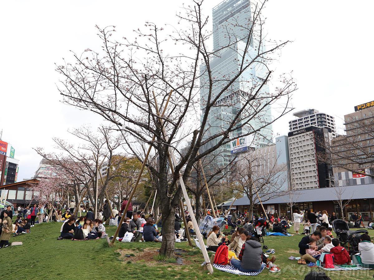 にぎわう天王寺公園エントランスエリア「てんしば」(3月31日撮影)