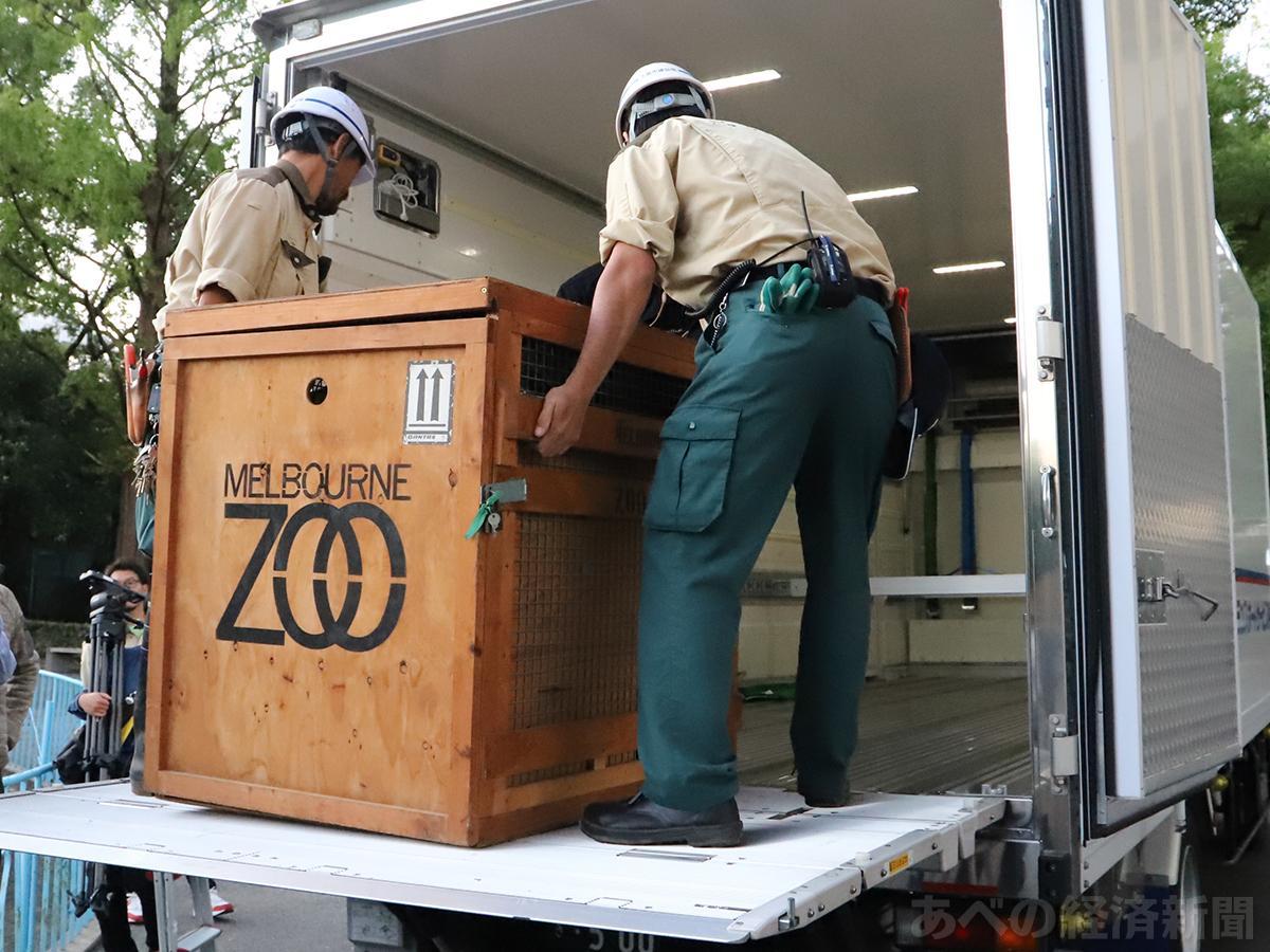 園内でアークが入った輸送箱をトラックに積み込む(10日6時ごろ)
