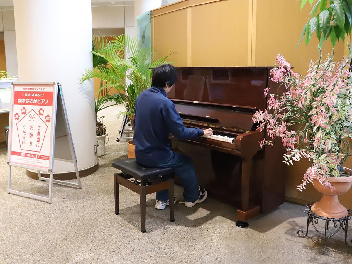 長居植物園・花と緑と自然の情報センターにストリートピアノ