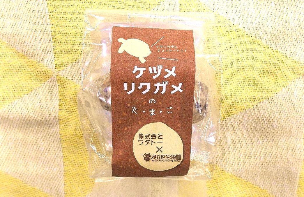 商品化された「ケヅメリクガメ」