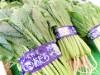 JAスマイル足立支店に農産物直売所 区内で取れた季節の農作物販売