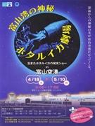 富山空港でホタルイカの発光ショー-「神秘の光」で観光PR