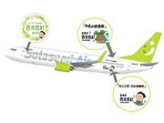 ソラシドに「西米良 カリコボーズ号」就航-九州・沖縄地名表示航空機第2弾