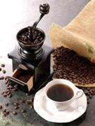 羽田空港で「コーヒーフェア」-世界8産地の豆の紹介・試飲など