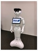 人型ロボット「Pepper」が自走で空港案内 ANAが宮崎空港で実地検証