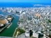 那覇空港を「花取引の拠点」に-ANA総研が提案