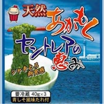 Seaweed Growing on Centrair Airport Island Dike on Sale to Eat