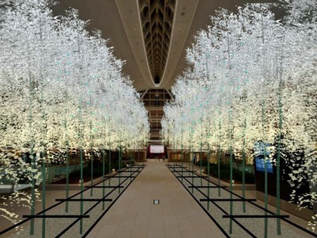 Christmas Trees in All 3 Haneda Airport Terminals plus Bamboo