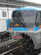 Tokyo Monorail Uses Special