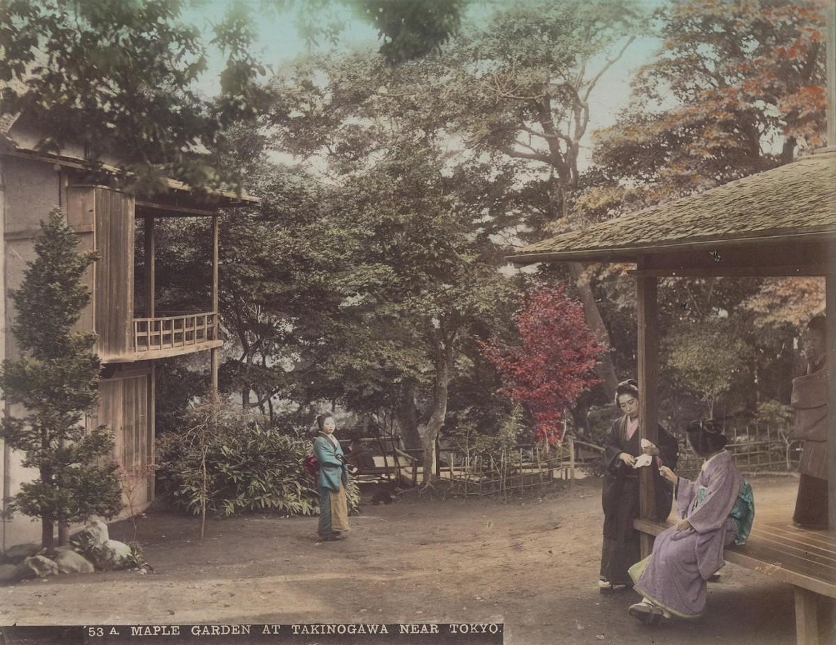 伊藤紀之さん所有「滝野川の紅葉園」(写真提供=東京都北区)