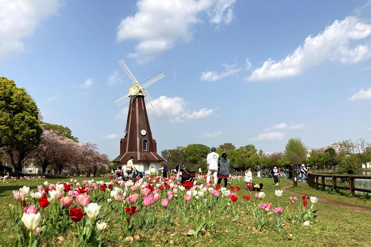 浮間公園のシンボルである風車とチューリップ(2021年4月1日撮影)