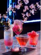 ANAインターコンチで「桜カクテル」 日本独特の風味で外国人客にも対応