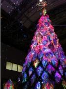 アークヒルズでクリスマスイルミネーション始まる アート集団「ミラーボーラー」がプロデュース