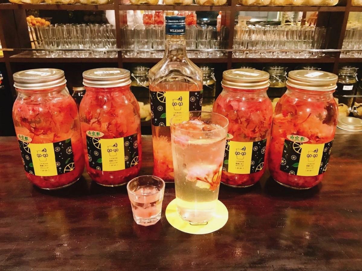 春限定で提供している「桜塩レモンサワー」