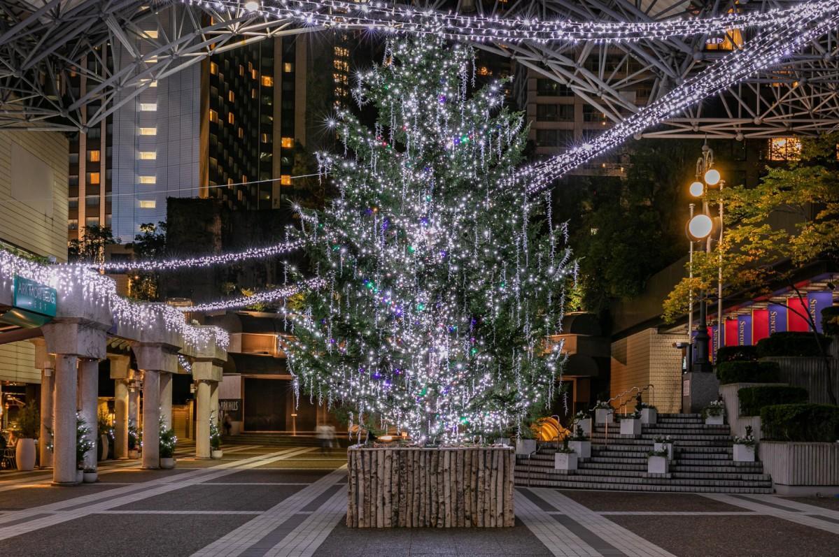 アーク・カラヤン広場に設置されたクリスマスツリー