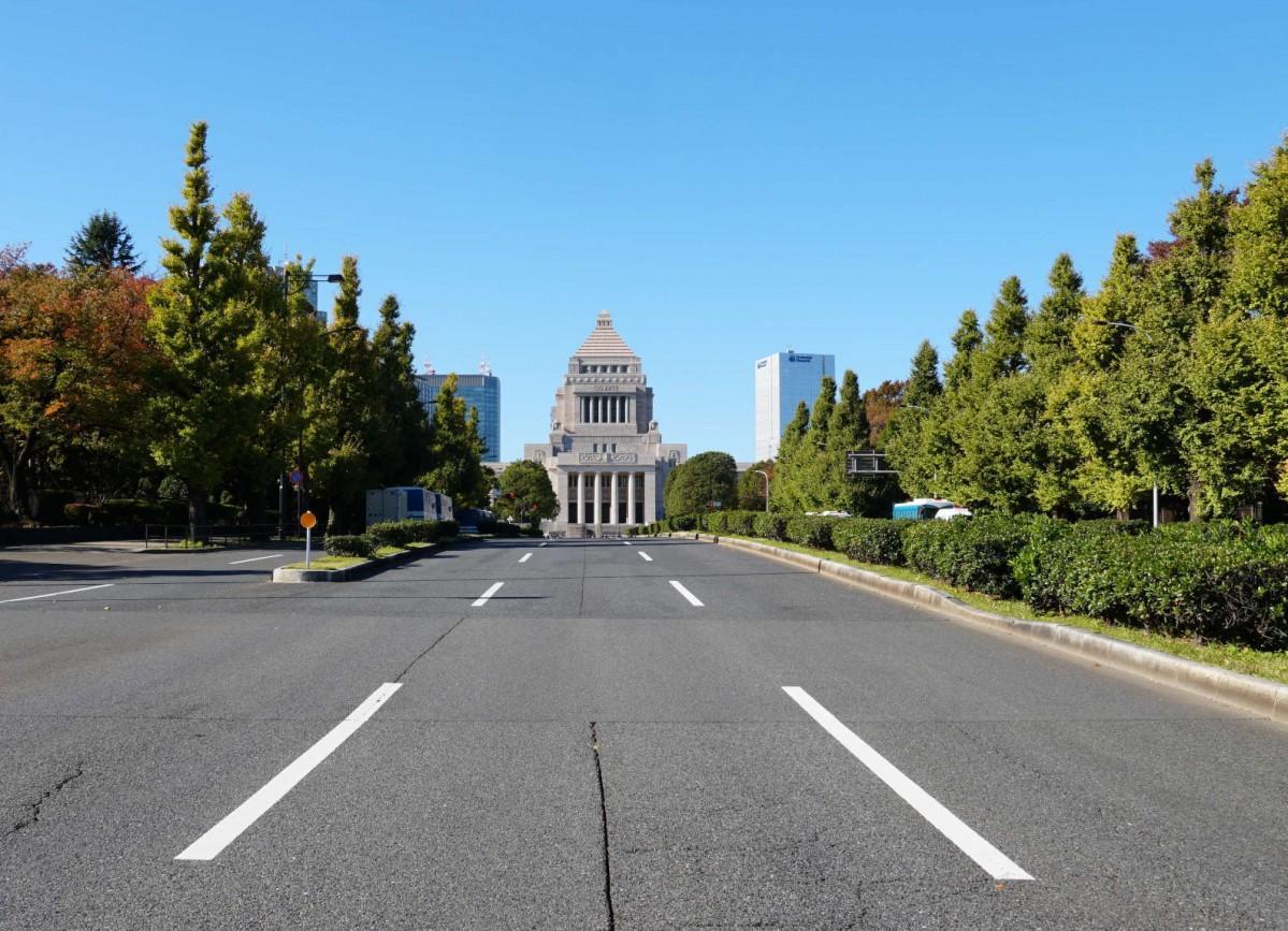 色づき始めた国会議事堂正面のイチョウ並木(2019年11月20日撮影)