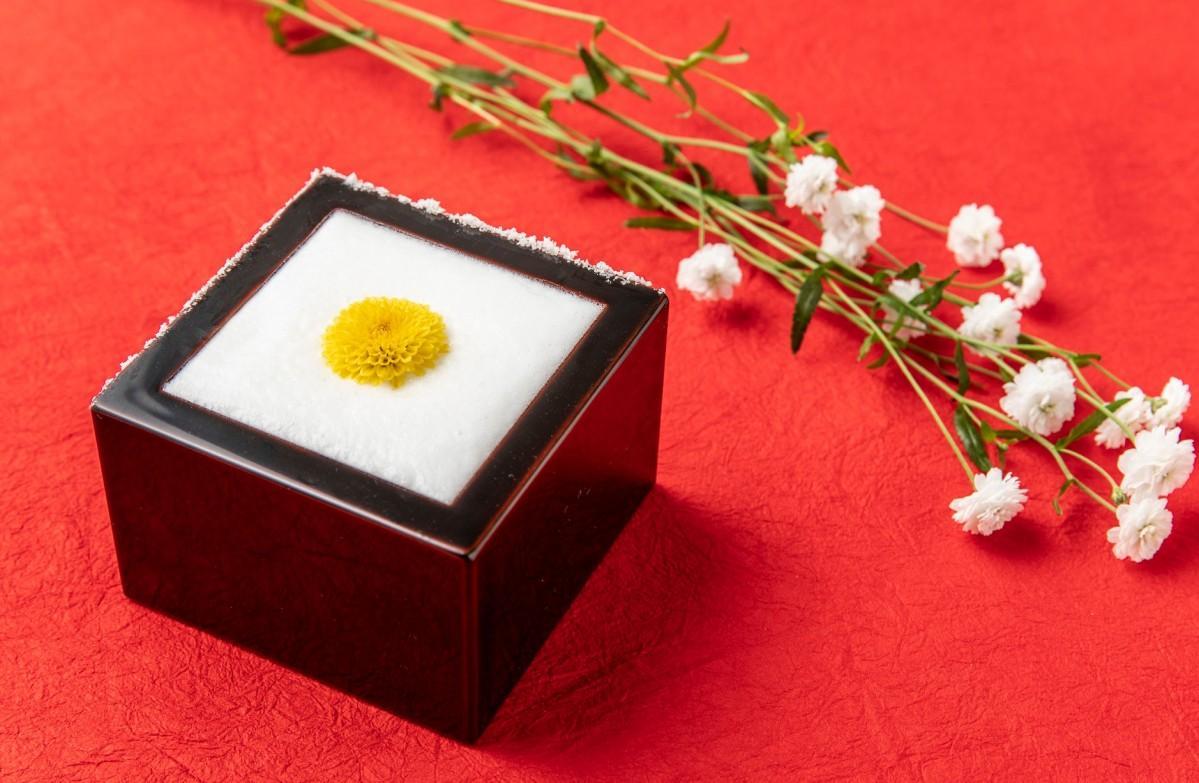 日本酒「奥能登の白菊」をベースにした「白菊カクテル」