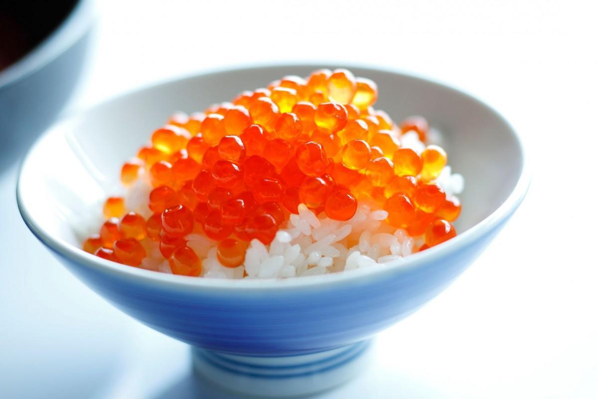 北海道の「北海いくら丼」