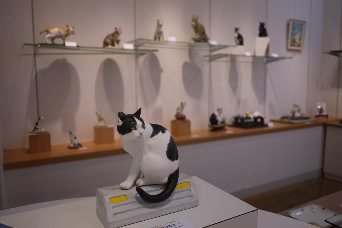 猫をテーマにした作品を並べる同企画