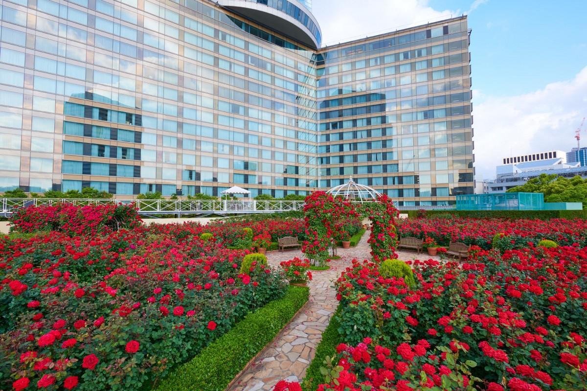 ホテルニューオータニの「Red Rose Garden」