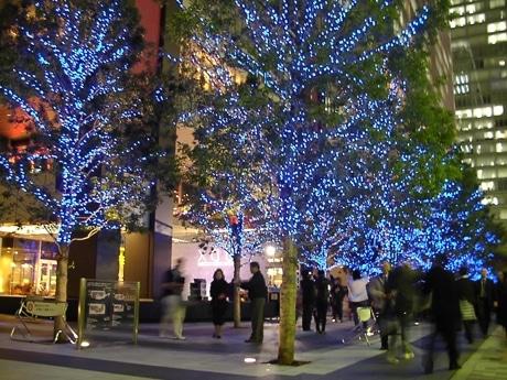 UDX西側街路樹のイルミネーション