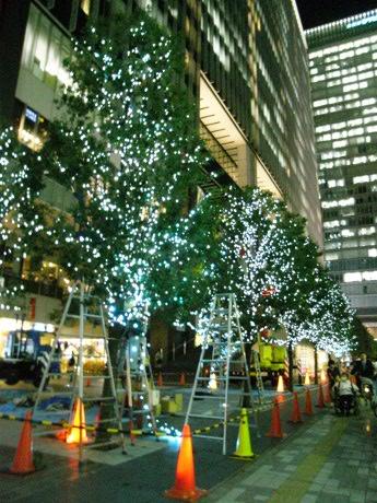 画像=イルミネーション準備中の西側街路樹(10月21日撮影)