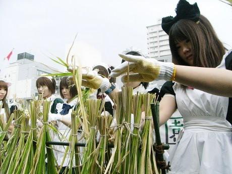 画像=アキバ米稲干し時のようす(2009年)