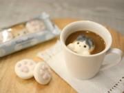 猫カフェにオリジナルマシュマロ カップに浮かぶ猫と肉球
