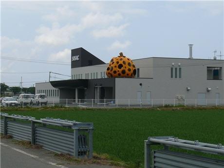 「外旭川サテライトクリニック」(SOSAC)に設置された草間彌生さんの巨大かぼちゃ作品「A PUMPKIN」