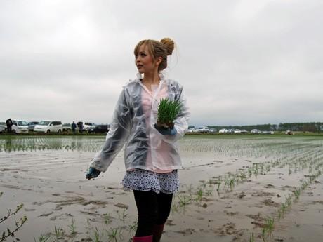 元ギャル社長・藤田志穂さんの呼びかけで今春、「ノギャル」メンバーが秋田県大潟村で行った田植え作業の様子。板橋瑠美さん、今泉宏美さん、KEIさんら人気ギャルモデルも参加