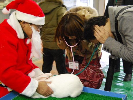 男女ペアでウサギの心臓音を聞く「ラブラブ聴診器」
