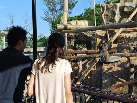 秋田市大森山動物園内で開かれる独身男女向け出会いサポートイベントの様子(写真は昨年)