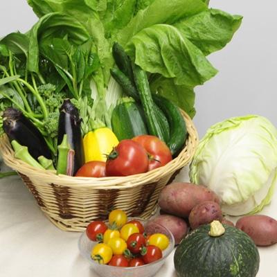 写真は「道の駅くららの新鮮おまかせ野菜セット」