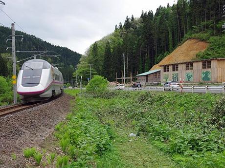 秋田新幹線の車窓からも鑑賞可能な「巨木の森 野外美術館」