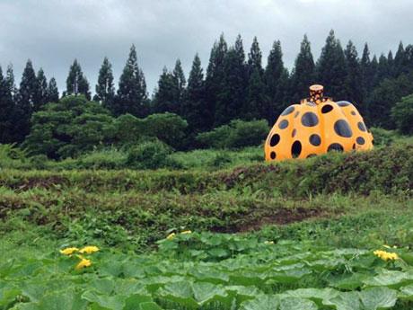 秋田県上小阿仁村のカボチャ畑に展示中の草間彌生さんの彫刻作品「南瓜」