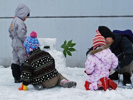 秋田市大町で開かれた「雪だるまコンテスト」会場の様子